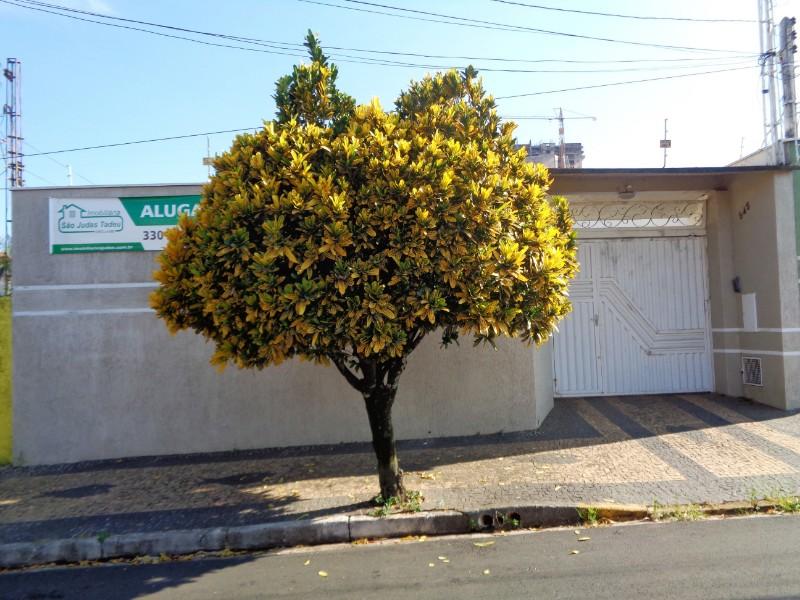 Casas-SÃO DIMAS-foto142986