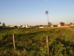 Terrenos e Chácaras-ÁREA RODOVIA CORNÉLIO PIRES-foto78006