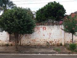 Terrenos e Chácaras-VILA FÁTIMA-foto108800
