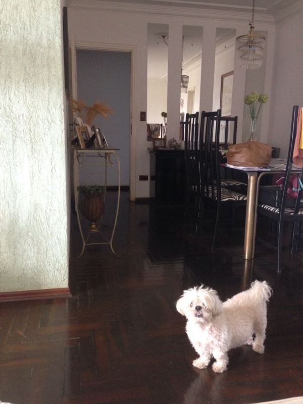 Apartamentos-ED. ABEL PEREIRA-foto122528