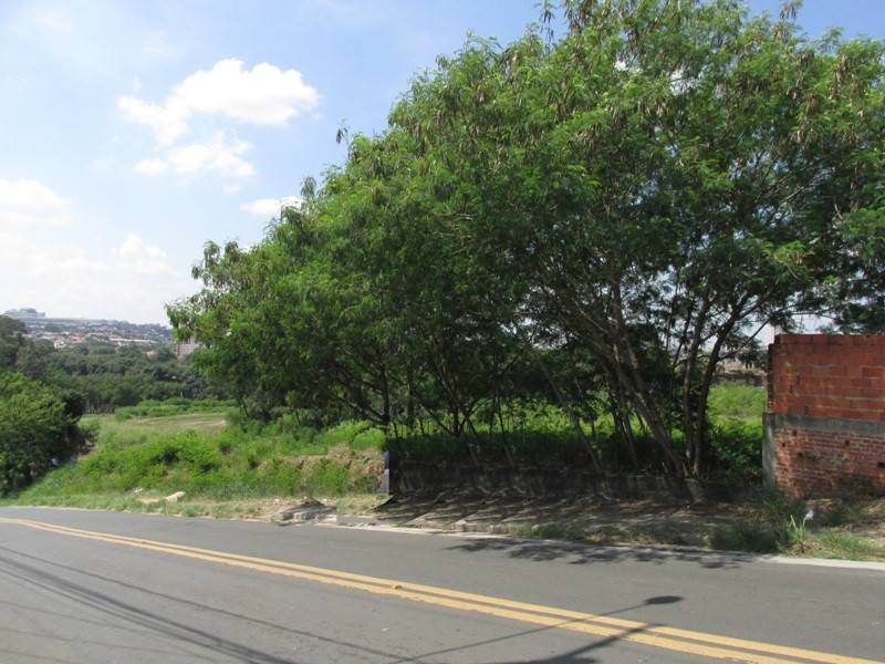 Terrenos e Chácaras-JUPIÁ-foto126283