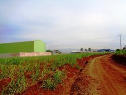 Terrenos e Chácaras-ÁREA RODOVIA PIRACICABA/TUPI-foto139030
