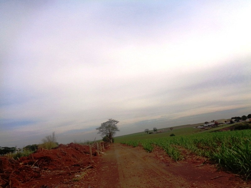 Terrenos e Chácaras-ÁREA RODOVIA PIRACICABA/TUPI-foto139037